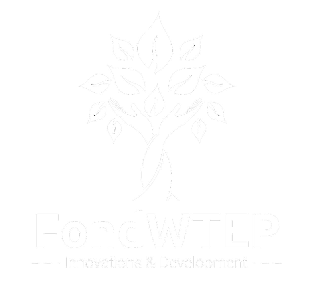 Fond WTEP Fondu CEE Capital Management, O fonde WTEP, CEE Capital Management